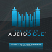 The Jewish<BR>Audio Bible<BR>MP3 DVD